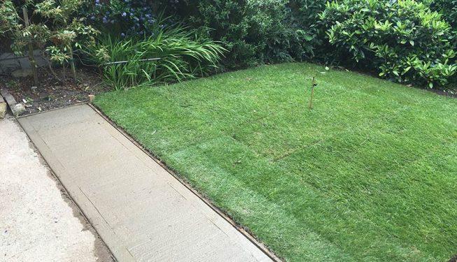small garden design in Chelmsford