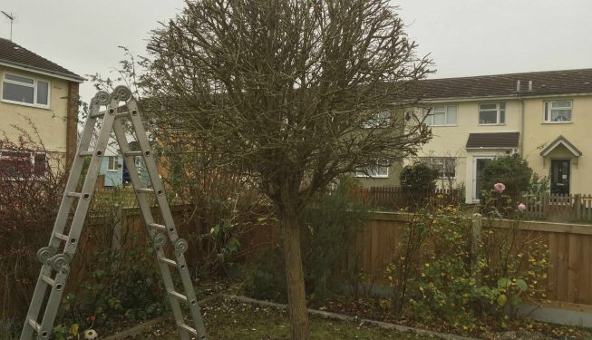 Landscaping_Service_Essex_0303-(4)
