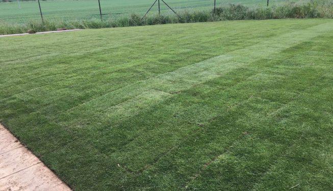 Landscaping_Service_Essex_0327-(2)