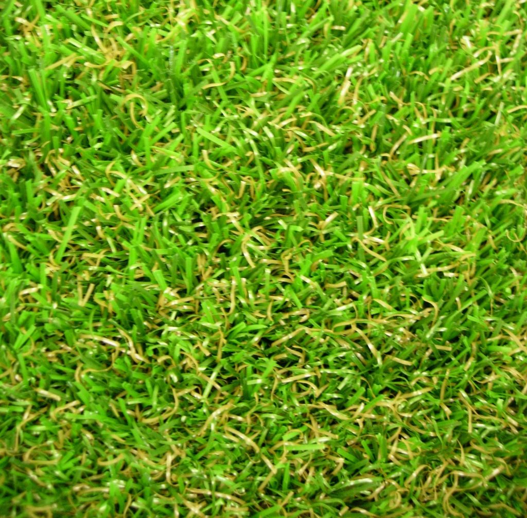 grasss